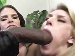 Babe, Big Boobs, Blowjob, Interracial, Pornstar