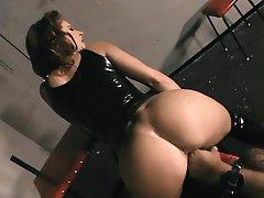 Anal, BDSM, Blowjob, Big Boobs, Brunette